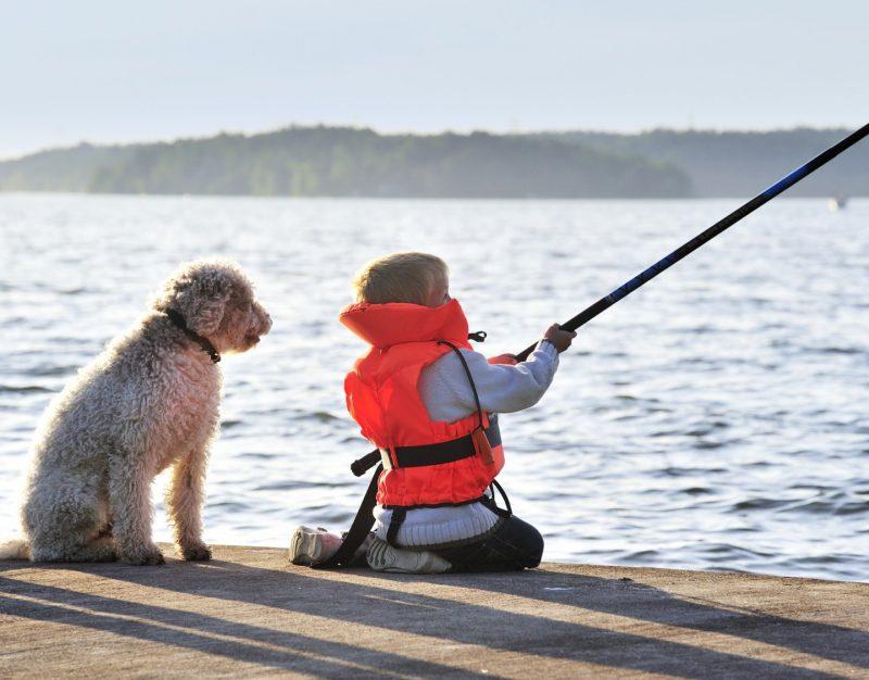 Pojke i flytväst som fiskar bredvid en hund