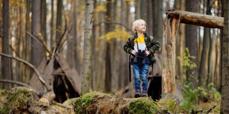Ett barn som står i en skog